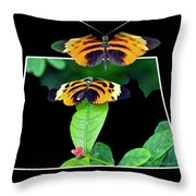 Gentle Butterfly Courtship 01 Out Of Bounds Throw Pillow