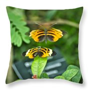 Gentle Butterfly Courtship 01 Throw Pillow