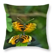 Gentle Butterfly Courtship 03 Throw Pillow
