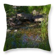 Gentle Flow Throw Pillow