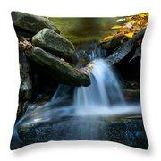 Gentle Little Falls Throw Pillow