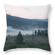 Gentle Morning Throw Pillow