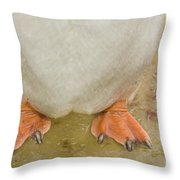 Gentoo Penguin Feet Throw Pillow