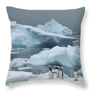Gentoo Penguins With Icebergs Antarctica Throw Pillow