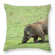 Genuflect Throw Pillow