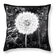 Geodesicate Throw Pillow