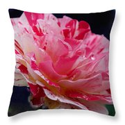 George Burns Floribunda Rose Throw Pillow