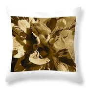 George Burns Rose 2 Throw Pillow