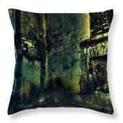 George Everest's House Mussoorie Throw Pillow