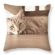 George The Cat Throw Pillow