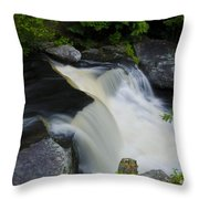 George W Childs Park Waterfall Throw Pillow