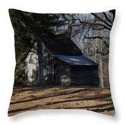 Georgia Barn Throw Pillow