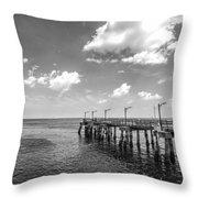 Georgia's St Simon's Island Pier Throw Pillow