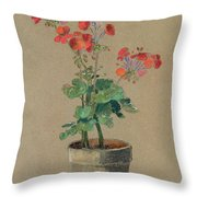 Geraniums In A Pot  Throw Pillow
