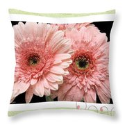 Gerber Daisy Peace 4 Throw Pillow