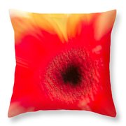 Gerbera Daisy Abstract Throw Pillow
