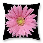 Gerbera Daisy Throw Pillow by Vickie Szumigala