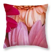 Gerbera Impressions Throw Pillow
