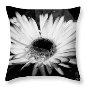 Gerbera In Black And White Throw Pillow