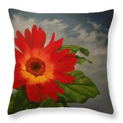 Gerbera Melange Daisy Throw Pillow