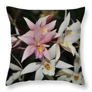 Gerberara Snow Ballet 2 Of 2 Throw Pillow