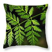Gereric Vegetation Throw Pillow