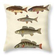 German Sea Fish Throw Pillow