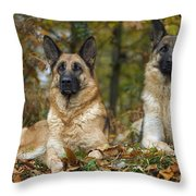 German Shepherd Dogs Throw Pillow