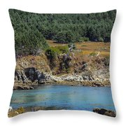 Gerstle Beach Throw Pillow