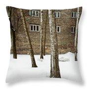 Gertrudes Street Throw Pillow