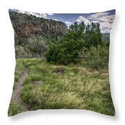 Get Off The Road And Enjoy Nature Throw Pillow