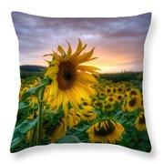 Get Sun Throw Pillow