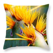 Get The Point Throw Pillow