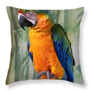 Getting A Good Kick Start Of The Day Throw Pillow