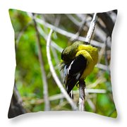 Getting Clean Throw Pillow