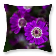 Getting Noticed Throw Pillow