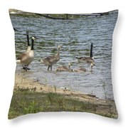 Getting Our Feet Wet Throw Pillow