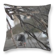 Getting Out Of Here Throw Pillow