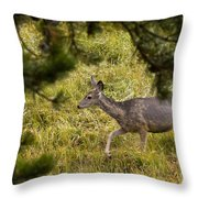 Getting Out Of Sight Throw Pillow
