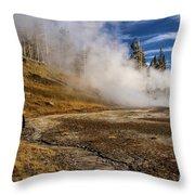 Geyser Gazer Throw Pillow