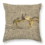 Ghost Crab Throw Pillow