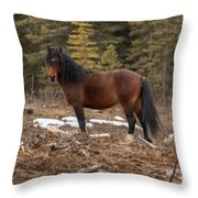 Ghost Forest Stallion Throw Pillow