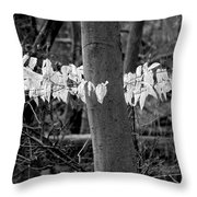 Ghost Leaves Throw Pillow by Steven Ralser