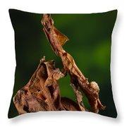Ghost Or Dead Leaf Mantis Throw Pillow