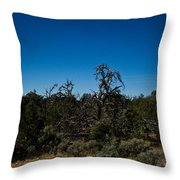 Ghost Tree Of The West Throw Pillow