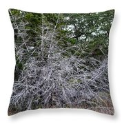 Ghost Trees 1 Throw Pillow