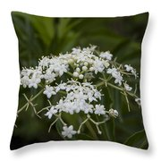 Ghost White Throw Pillow