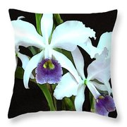 Ghostly Cattleyas Throw Pillow