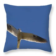 Ghostly Flight Throw Pillow