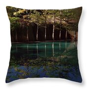 Ghostly Quiet Throw Pillow